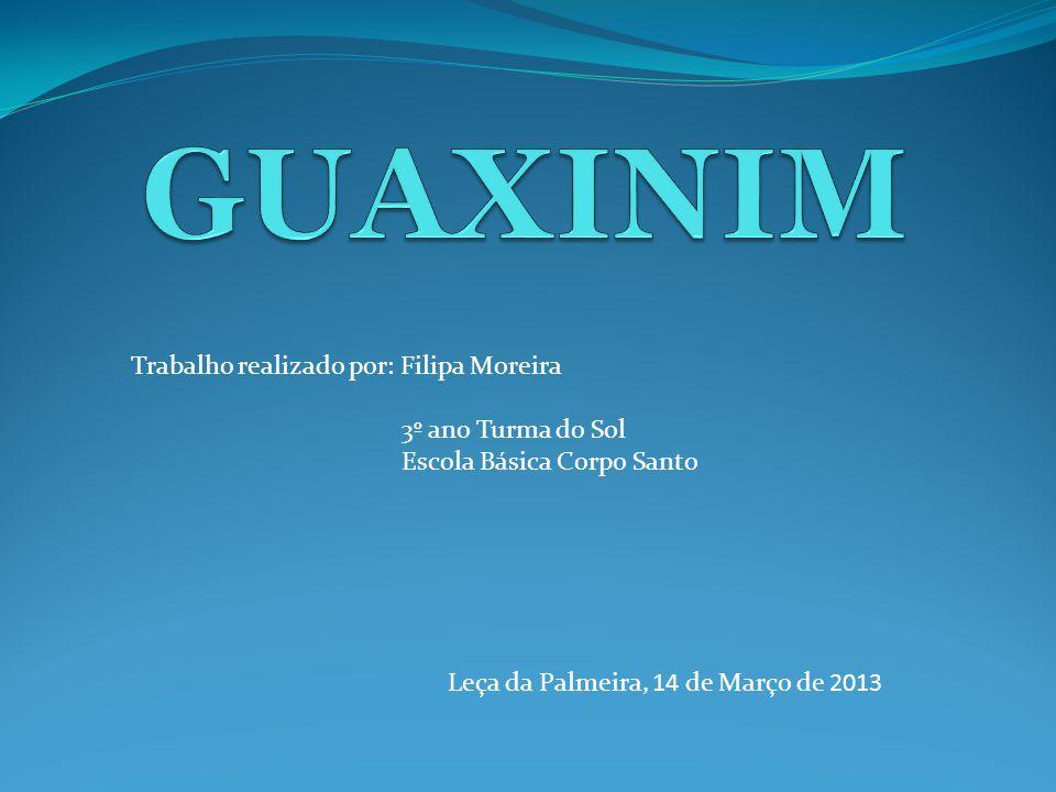 GUAXINIM Trabalho realizado por: Filipa Moreira 3º ano Turma do Sol