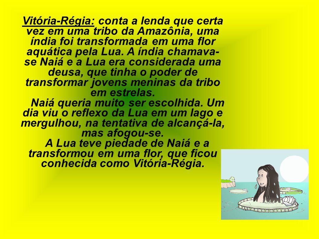 Vitória-Régia: conta a lenda que certa vez em uma tribo da Amazônia, uma índia foi transformada em uma flor aquática pela Lua. A índia chamava-se Naiá e a Lua era considerada uma deusa, que tinha o poder de transformar jovens meninas da tribo em estrelas.