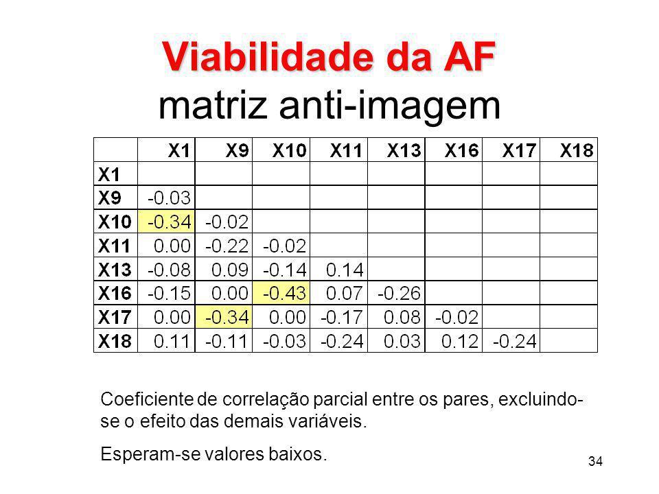 Viabilidade da AF matriz anti-imagem