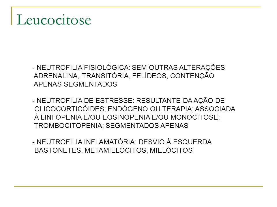 Leucocitose NEUTROFILIA FISIOLÓGICA: SEM OUTRAS ALTERAÇÕES