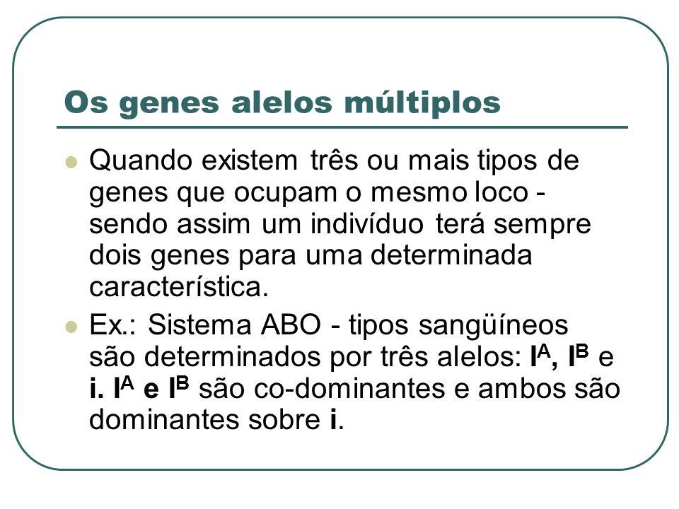 Os genes alelos múltiplos