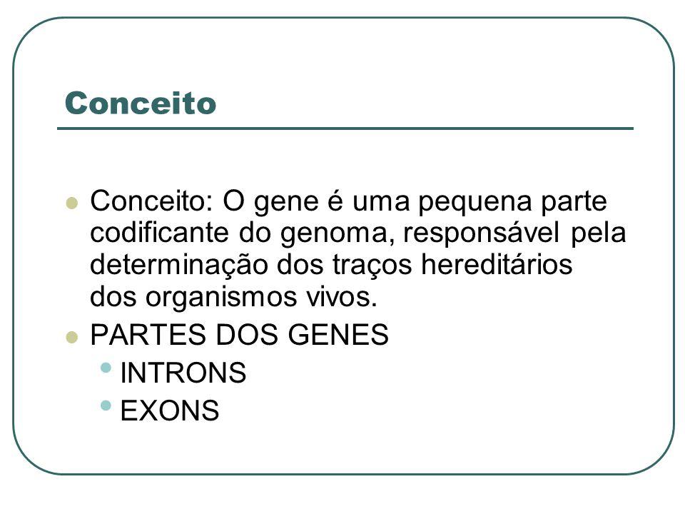 Conceito Conceito: O gene é uma pequena parte codificante do genoma, responsável pela determinação dos traços hereditários dos organismos vivos.