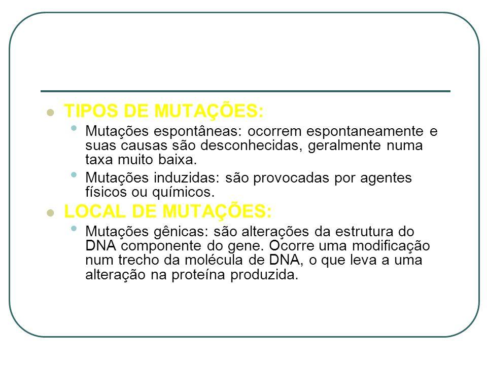 TIPOS DE MUTAÇÕES: LOCAL DE MUTAÇÕES: