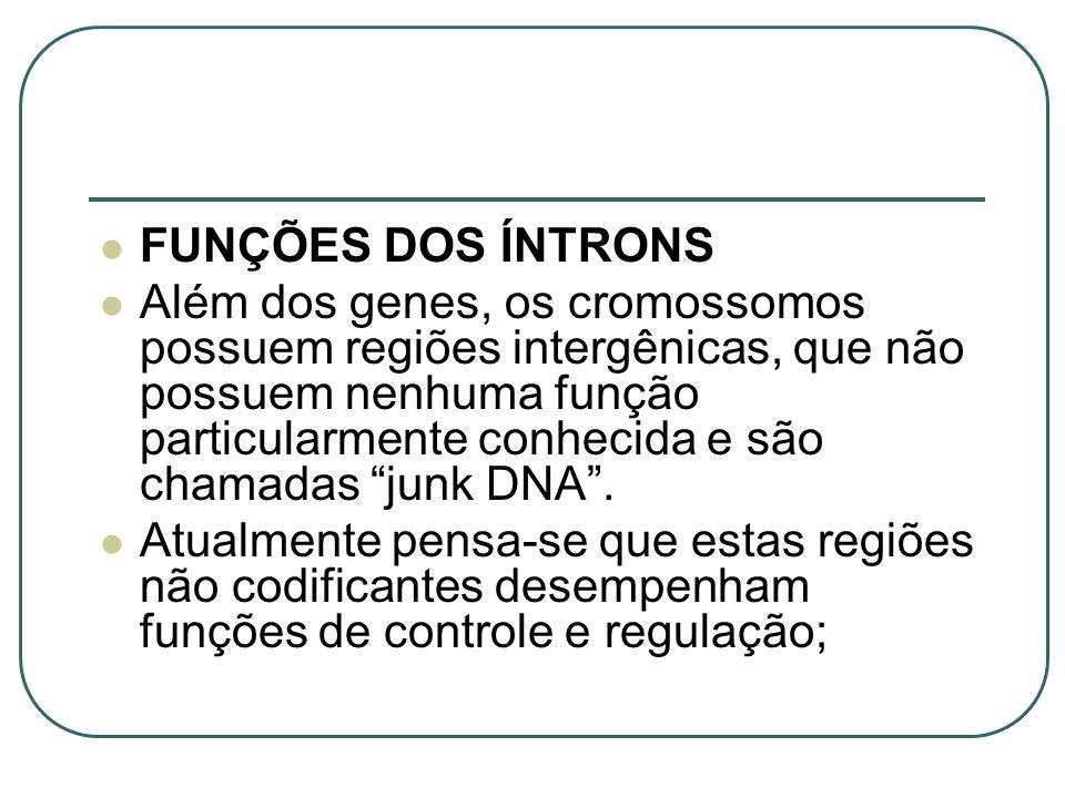 FUNÇÕES DOS ÍNTRONS
