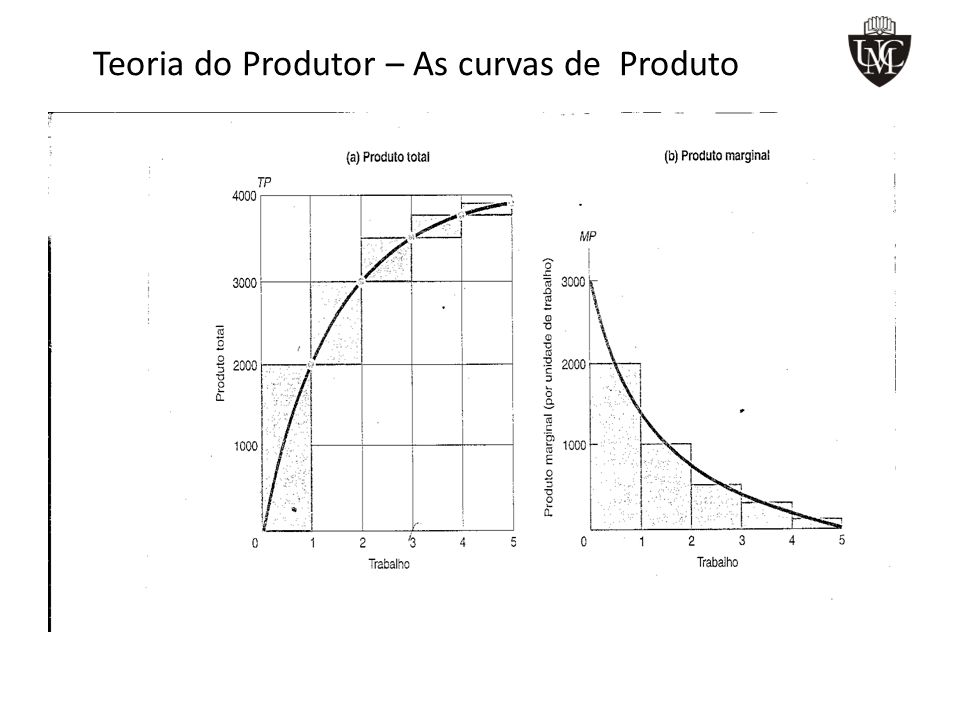 Teoria do Produtor – As curvas de Produto