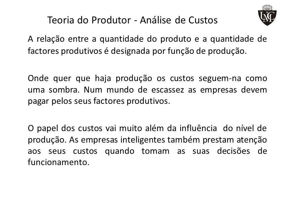 Teoria do Produtor - Análise de Custos