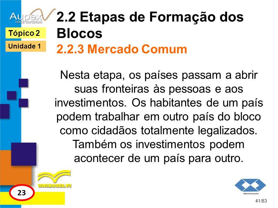 2.2 Etapas de Formação dos Blocos 2.2.3 Mercado Comum