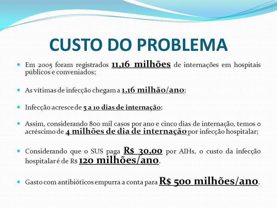 CUSTO DO PROBLEMA Em 2005 foram registrados 11,16 milhões de internações em hospitais públicos e conveniados;