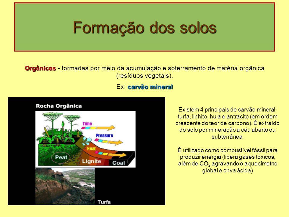 Formação dos solos Orgânicas - formadas por meio da acumulação e soterramento de matéria orgânica (resíduos vegetais).