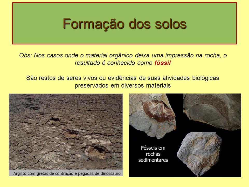 Formação dos solos Obs: Nos casos onde o material orgânico deixa uma impressão na rocha, o resultado é conhecido como fóssil.
