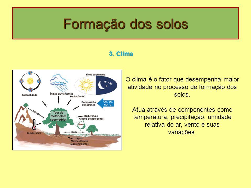 Formação dos solos 3. Clima