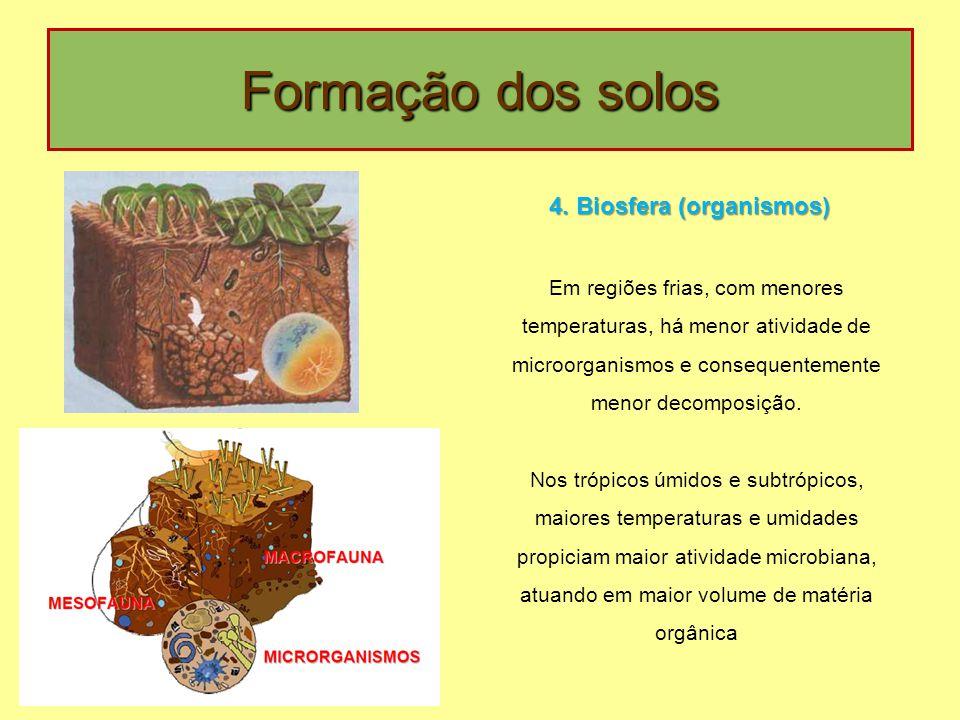 4. Biosfera (organismos)