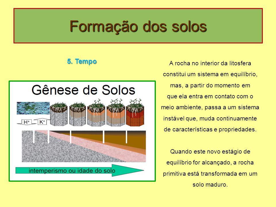 Formação dos solos 5. Tempo