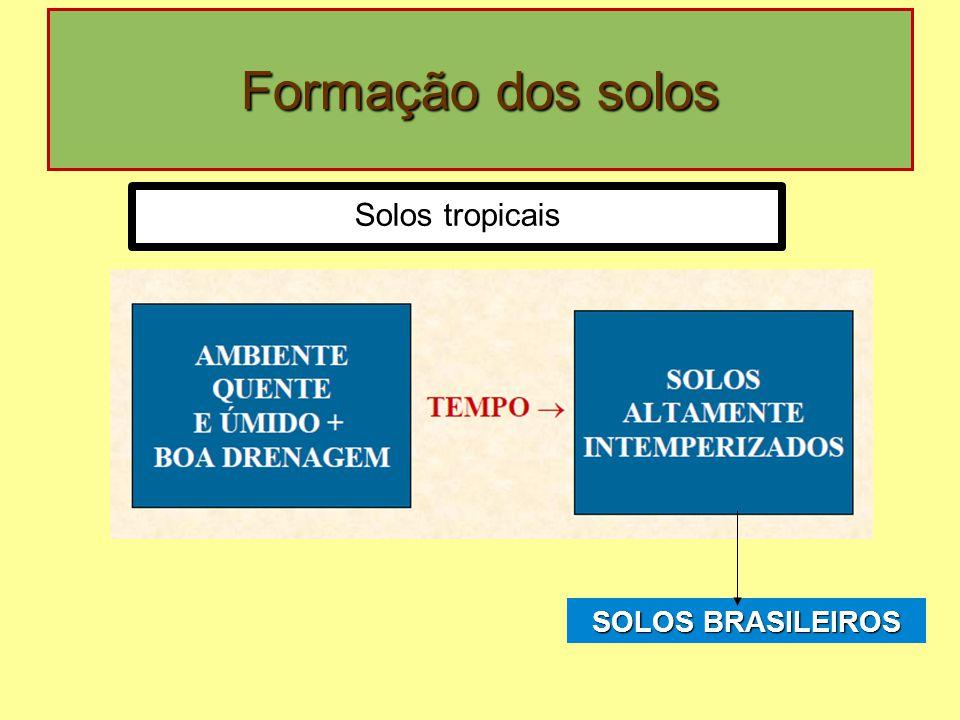 Formação dos solos Solos tropicais SOLOS BRASILEIROS