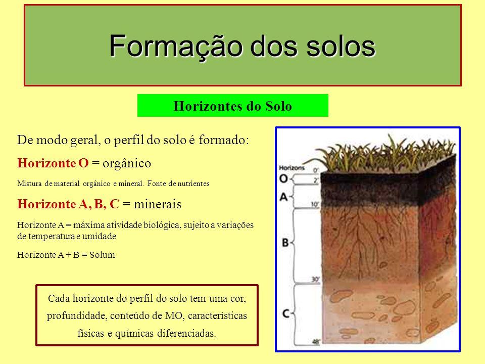 Formação dos solos Horizontes do Solo