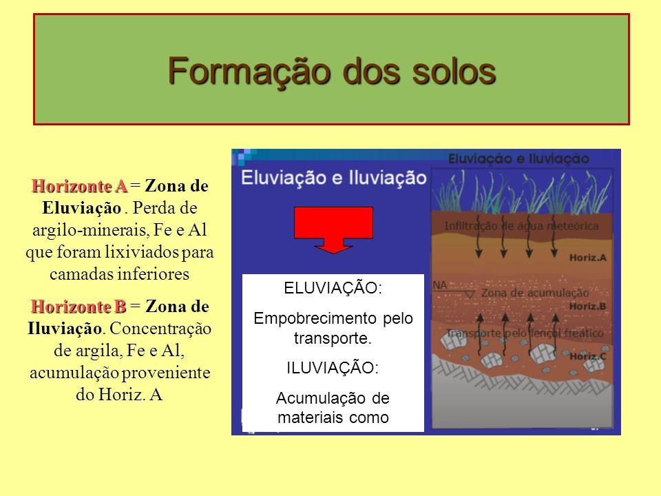 Formação dos solos Horizonte A = Zona de Eluviação . Perda de argilo-minerais, Fe e Al que foram lixiviados para camadas inferiores.