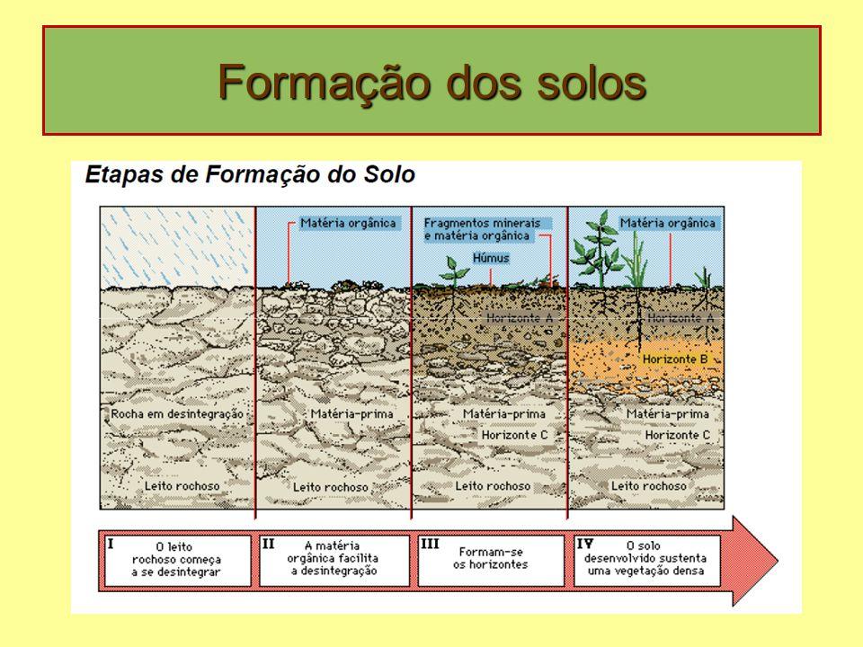 Formação dos solos