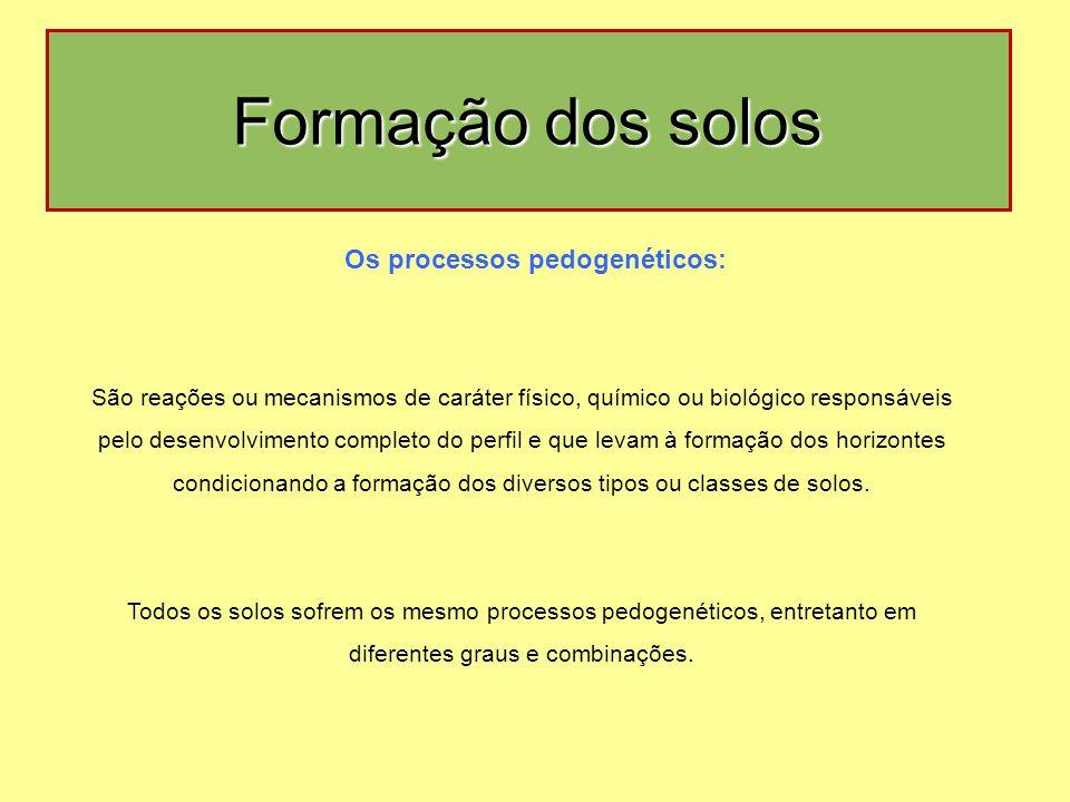 Os processos pedogenéticos: