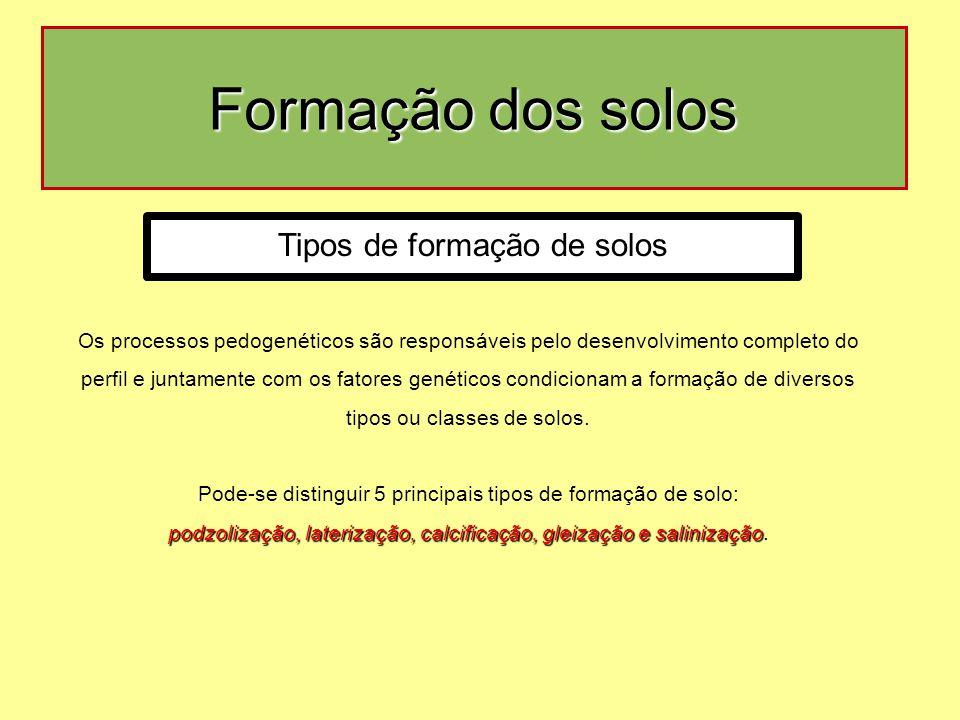 Formação dos solos Tipos de formação de solos