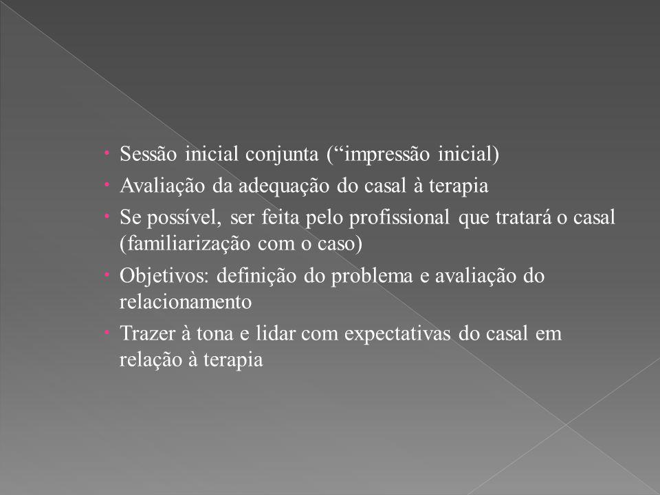 Sessão inicial conjunta ( impressão inicial)