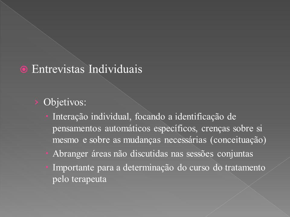 Entrevistas Individuais