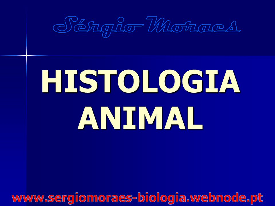 Sérgio Moraes HISTOLOGIA ANIMAL www.sergiomoraes-biologia.webnode.pt