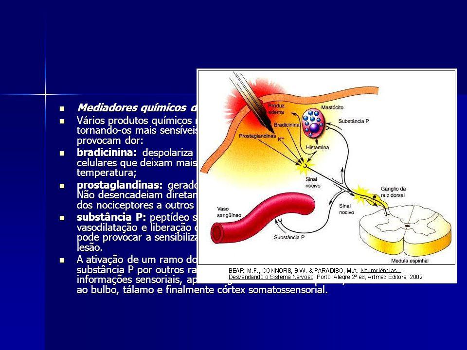 Mediadores químicos da dor