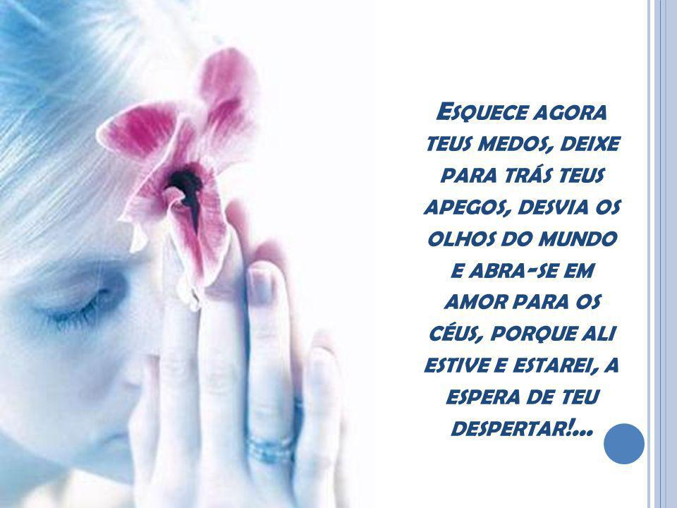 Esquece agora teus medos, deixe para trás teus apegos, desvia os olhos do mundo e abra-se em amor para os céus, porque ali estive e estarei, a espera de teu despertar!...