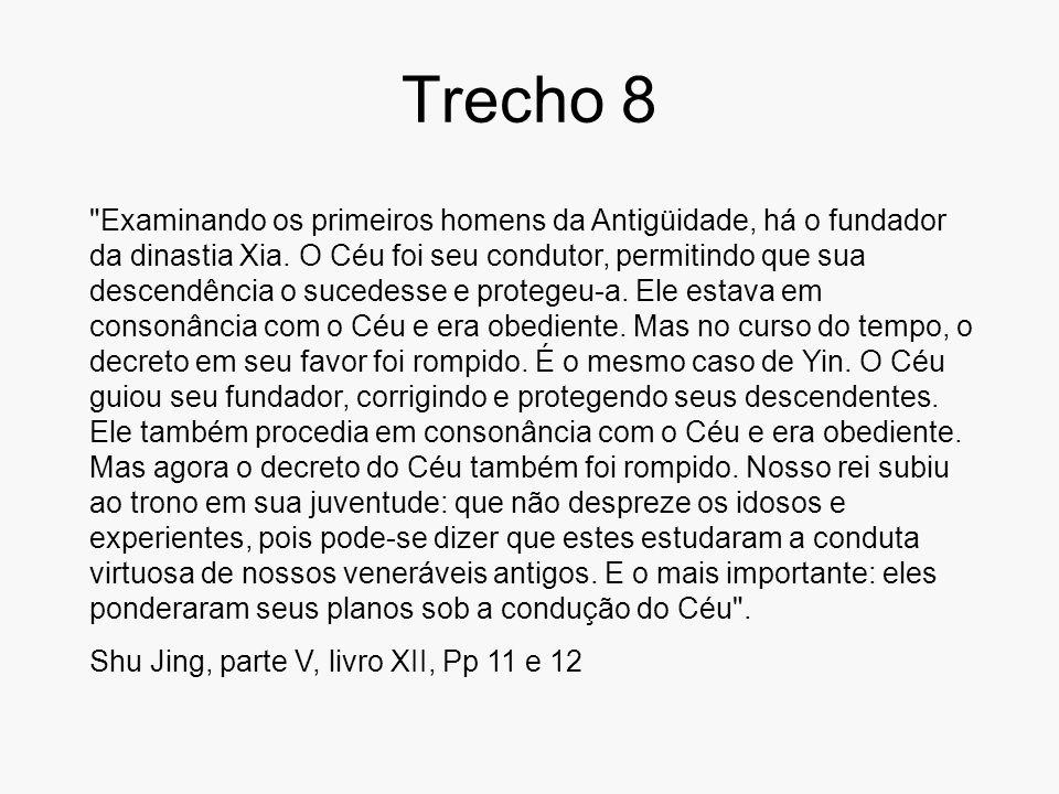 Trecho 8