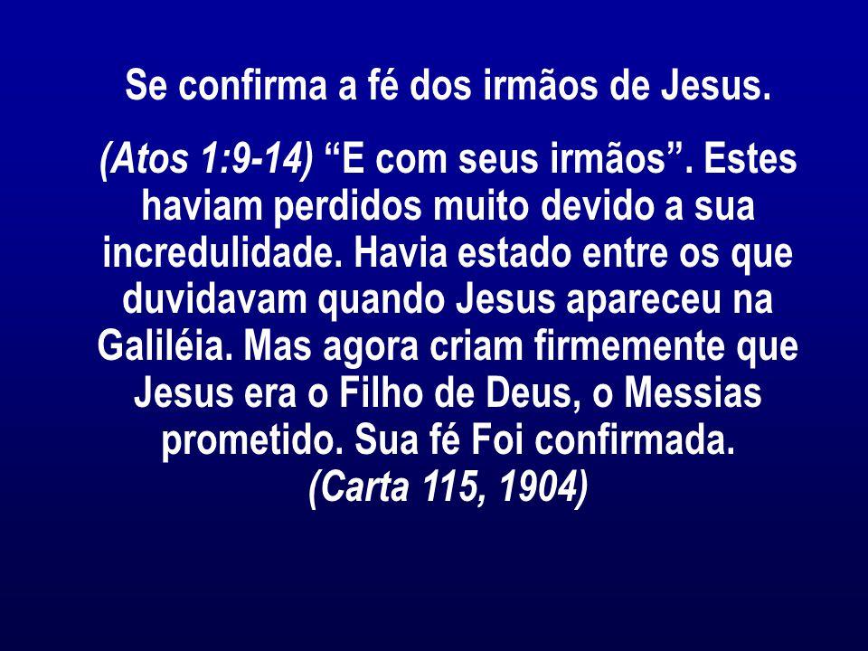 Se confirma a fé dos irmãos de Jesus.