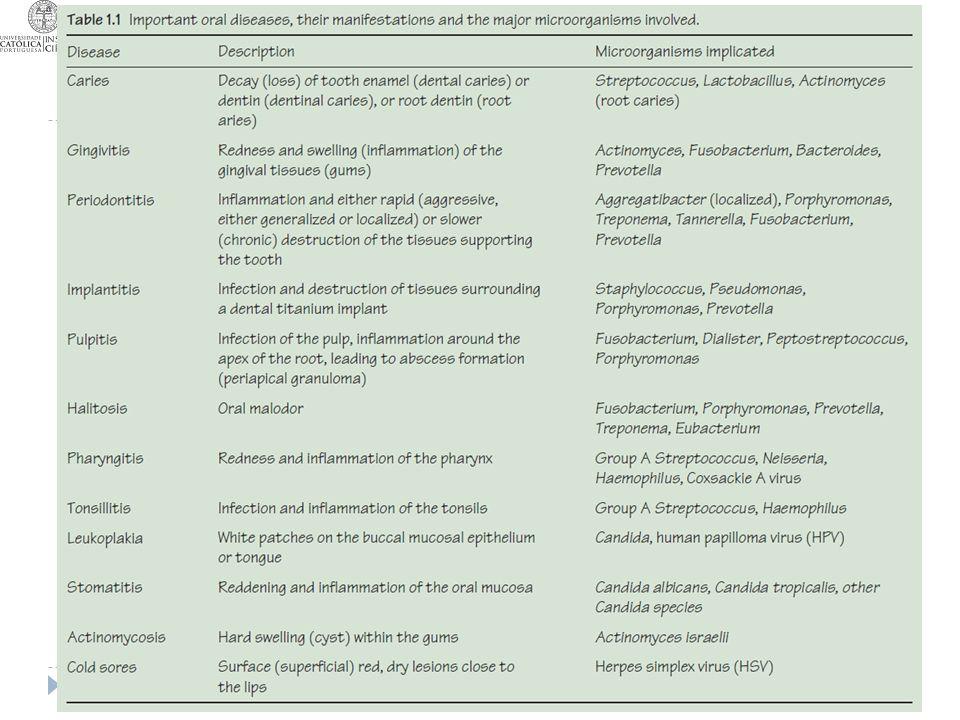 Principais infecções da cavidade oral