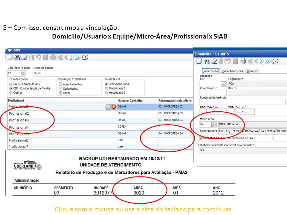 Domicílio/Usuário x Equipe/Micro-Área/Profissional x SIAB