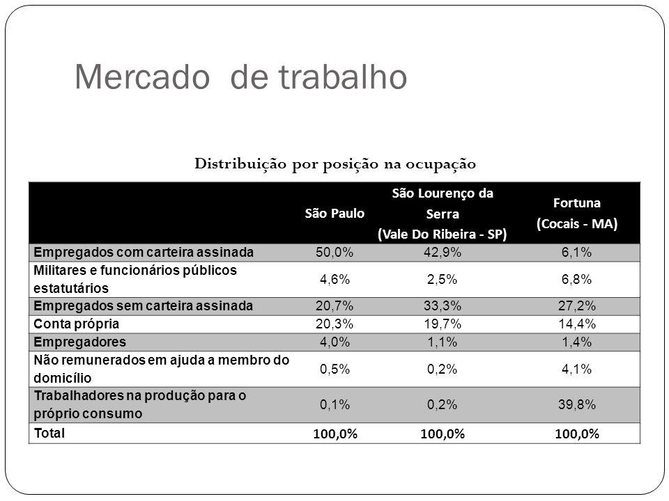 Mercado de trabalho Distribuição por posição na ocupação