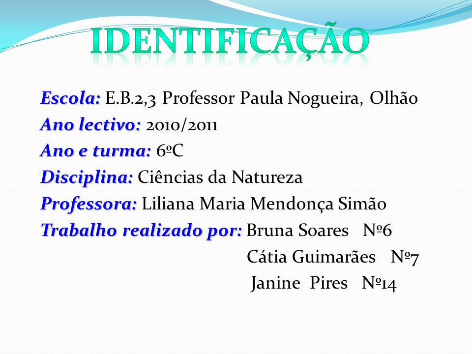 Identificação Escola: E.B.2,3 Professor Paula Nogueira, Olhão