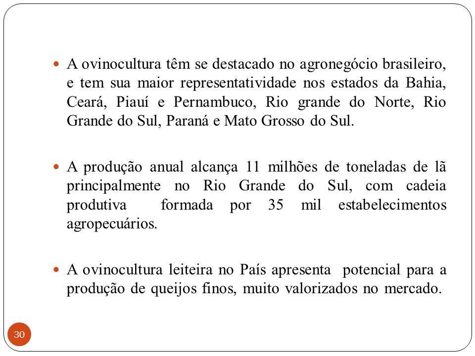 A ovinocultura têm se destacado no agronegócio brasileiro, e tem sua maior representatividade nos estados da Bahia, Ceará, Piauí e Pernambuco, Rio grande do Norte, Rio Grande do Sul, Paraná e Mato Grosso do Sul.