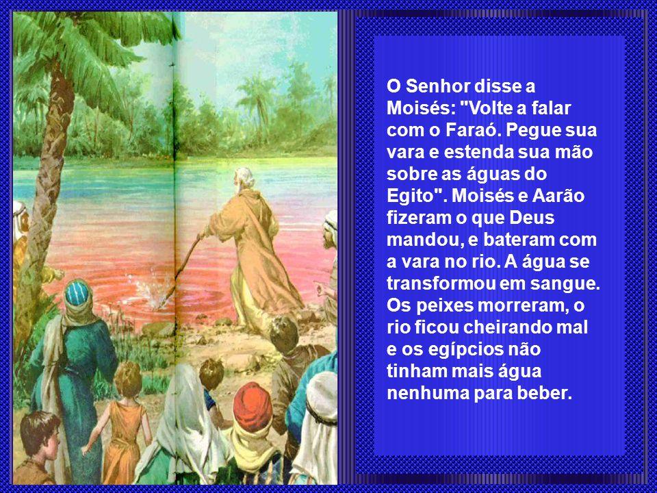O Senhor disse a Moisés: Volte a falar com o Faraó