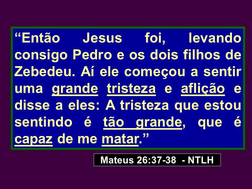 Então Jesus foi, levando consigo Pedro e os dois filhos de Zebedeu