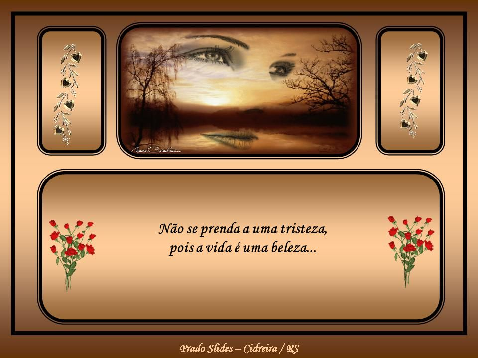 Não se prenda a uma tristeza, pois a vida é uma beleza...