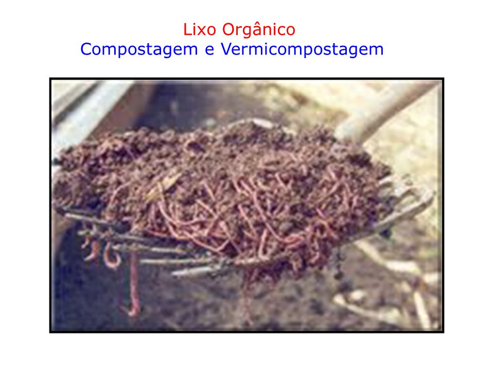 Lixo Orgânico Compostagem e Vermicompostagem