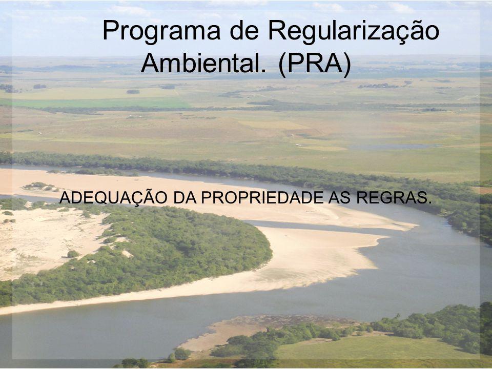 Programa de Regularização Ambiental. (PRA)