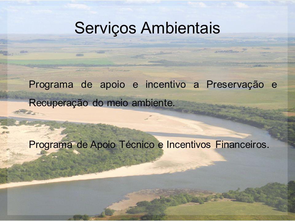 Serviços Ambientais Programa de apoio e incentivo a Preservação e Recuperação do meio ambiente.
