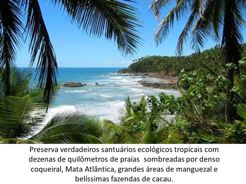Preserva verdadeiros santuários ecológicos tropicais com dezenas de quilômetros de praias sombreadas por denso coqueiral, Mata Atlântica, grandes áreas de manguezal e belíssimas fazendas de cacau.