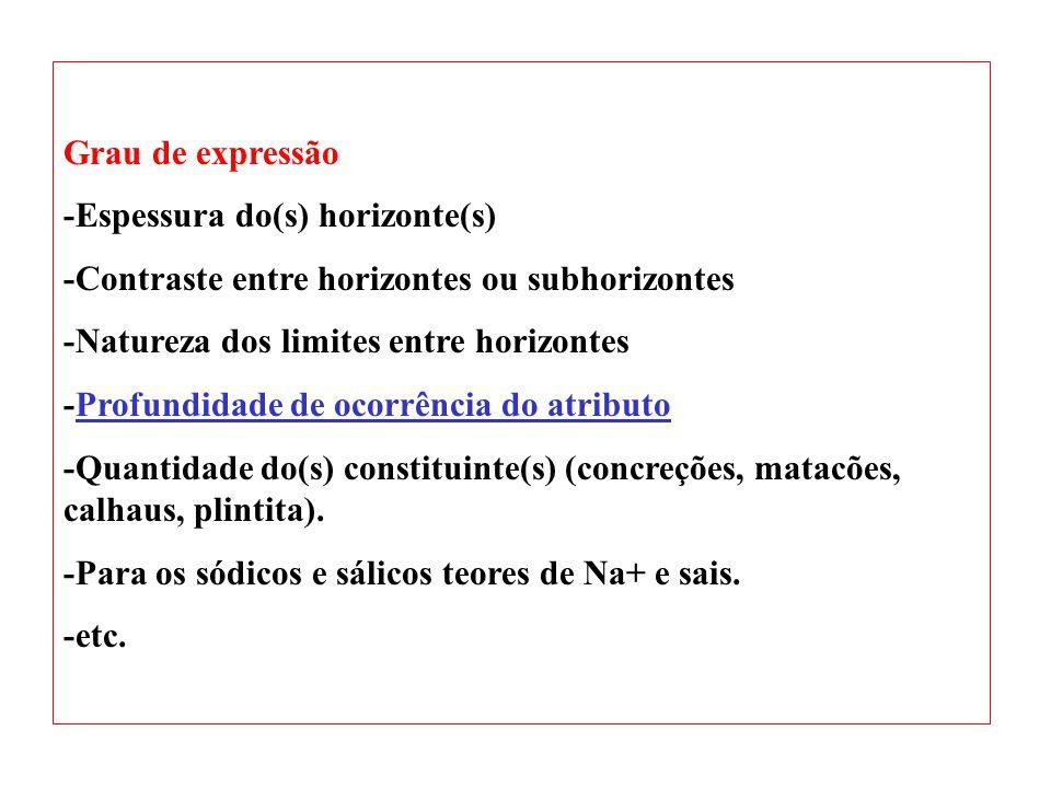 Grau de expressão -Espessura do(s) horizonte(s) -Contraste entre horizontes ou subhorizontes. -Natureza dos limites entre horizontes.