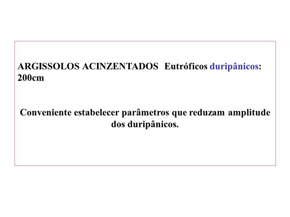 ARGISSOLOS ACINZENTADOS Eutróficos duripânicos: 200cm