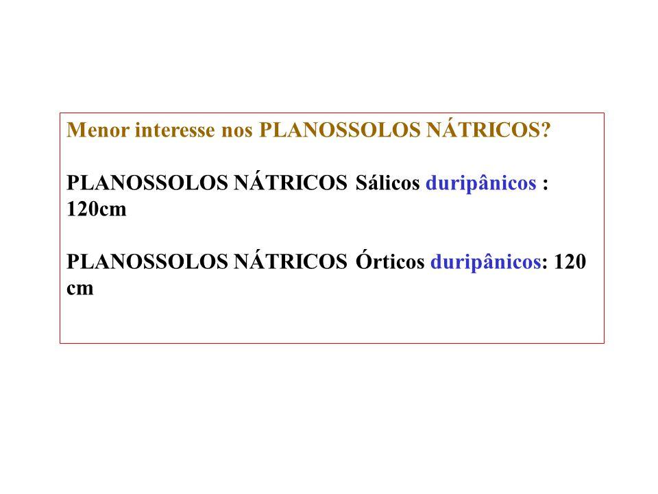 Menor interesse nos PLANOSSOLOS NÁTRICOS
