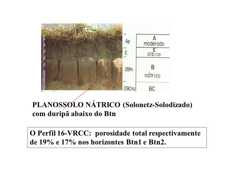 PLANOSSOLO NÁTRICO (Solonetz-Solodizado) com duripã abaixo do Btn