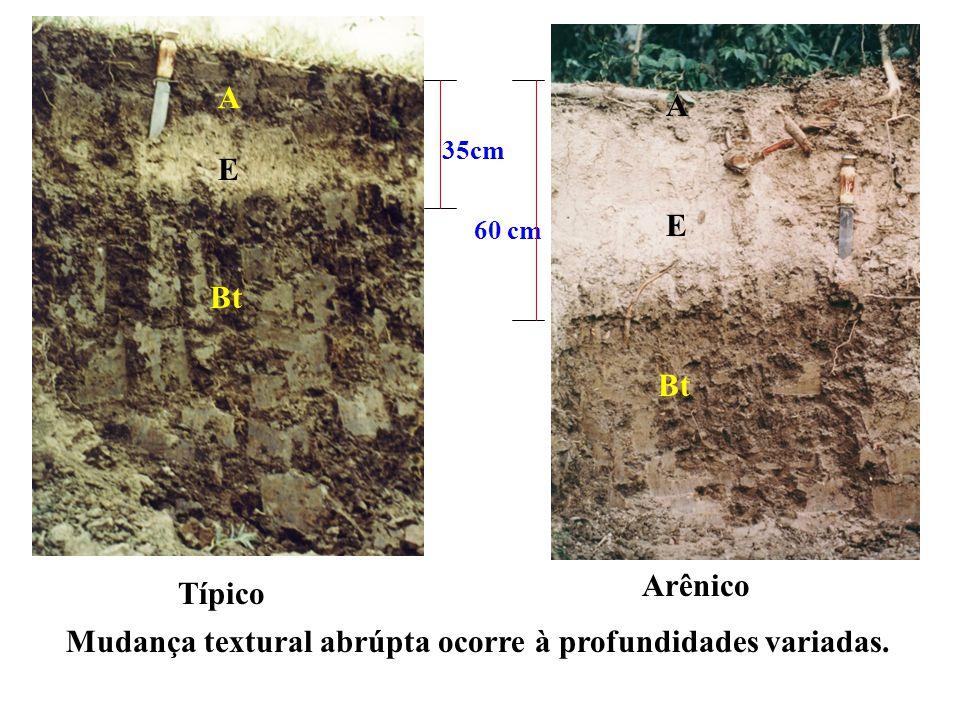 Mudança textural abrúpta ocorre à profundidades variadas.