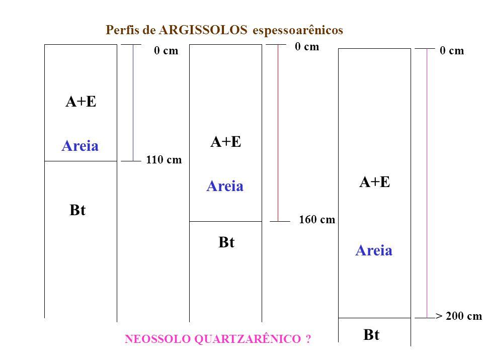 Perfis de ARGISSOLOS espessoarênicos
