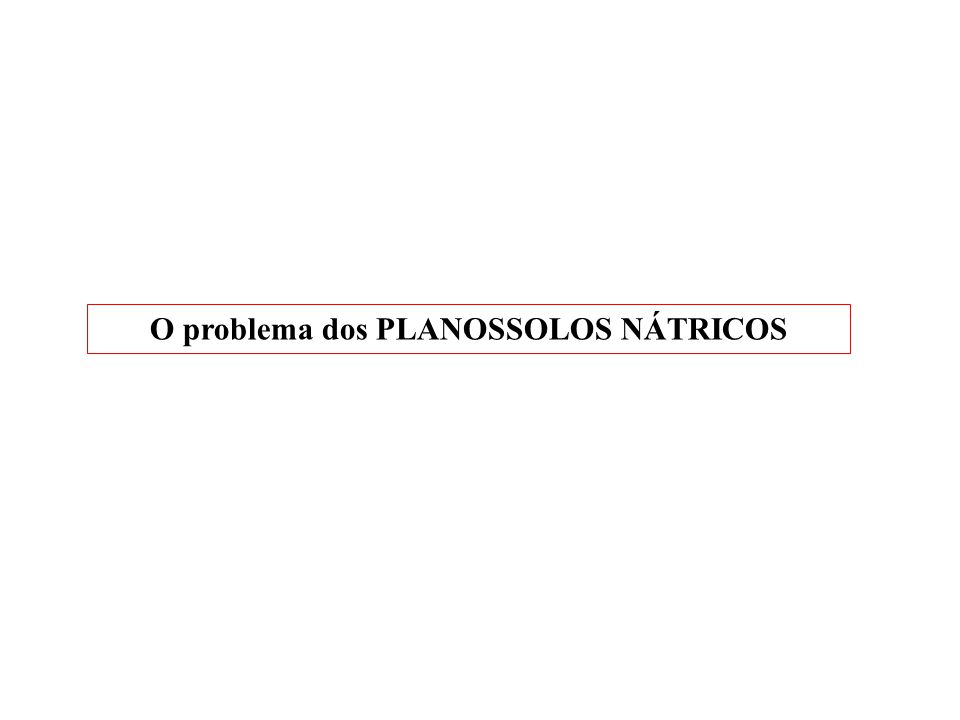 O problema dos PLANOSSOLOS NÁTRICOS