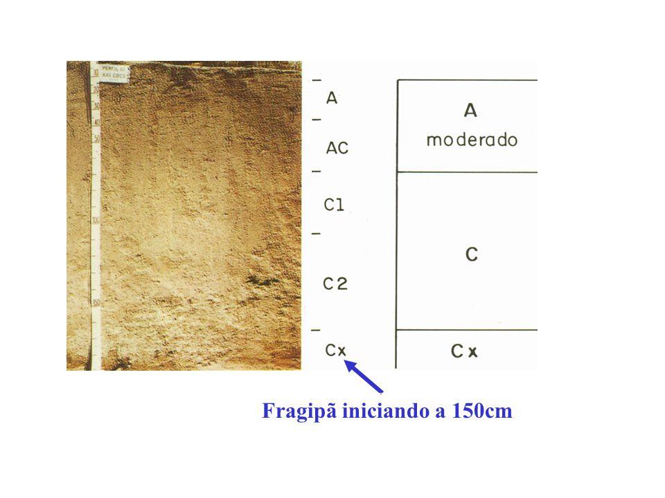 Fragipã iniciando a 150cm